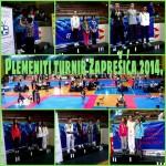 Plemeniti turnir Zaprešić 2014