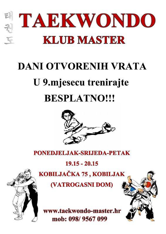 Taekwondo Klub Master