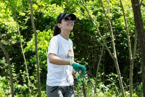 Priprema okoliša za sadnju medonosnog bilja